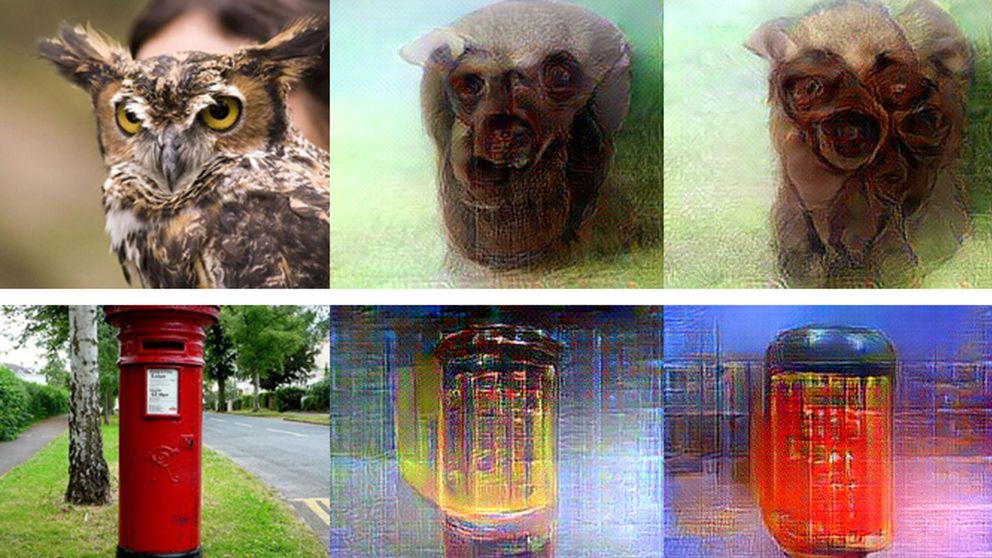 Första lodräta raden: bilder som personer fick se. De andra är bilder som återskapades av AI-programmet.