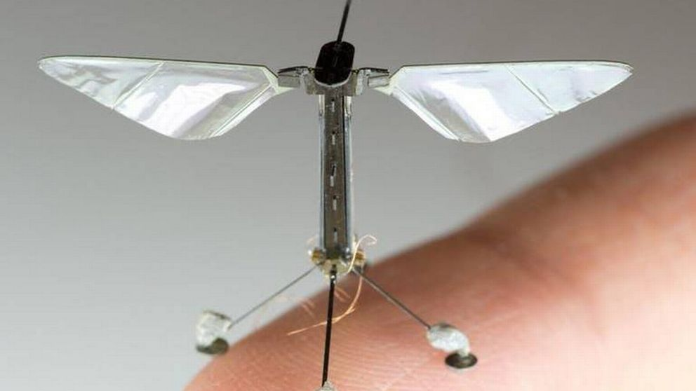 Vid Harvard har man forskat kring minidrönare som skulle kunna användas för pollinering av växter.