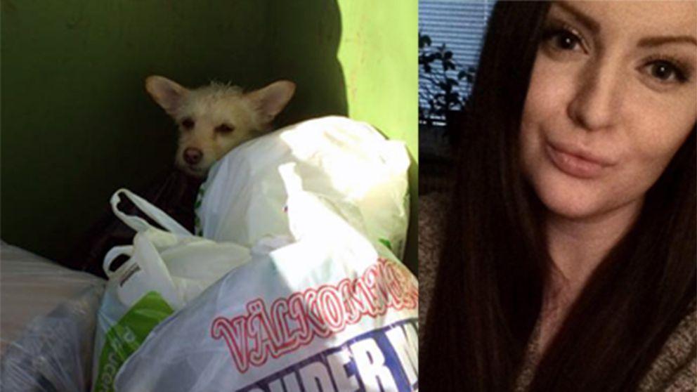 Liza Johansson och hunden som hittades i soptunnan