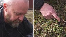 Svenerik Fritiofsson är en av entusiasterna bakom odlingen
