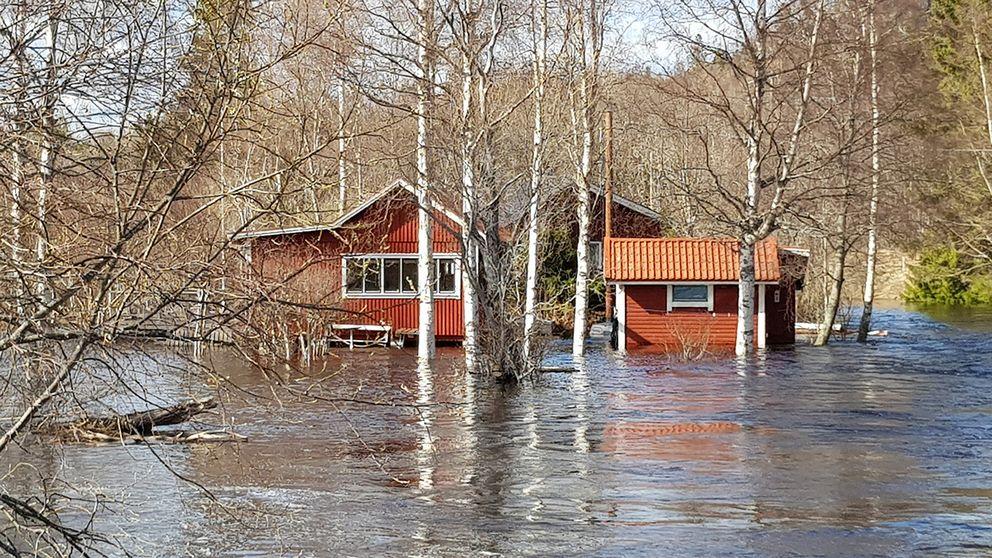 Gådeån, utanför Härnösand, Ångermanland, 6 maj