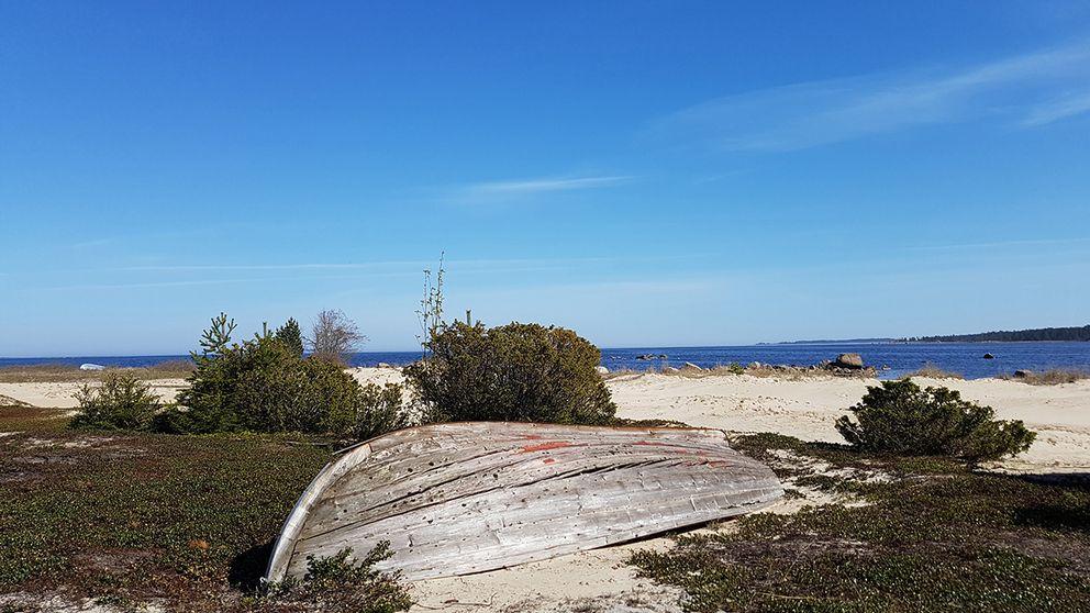 Den gamle och havet.....kallar jag min bild från 15,30-tiden denna ljuvliga dag. Sörfjärden Hälsingland