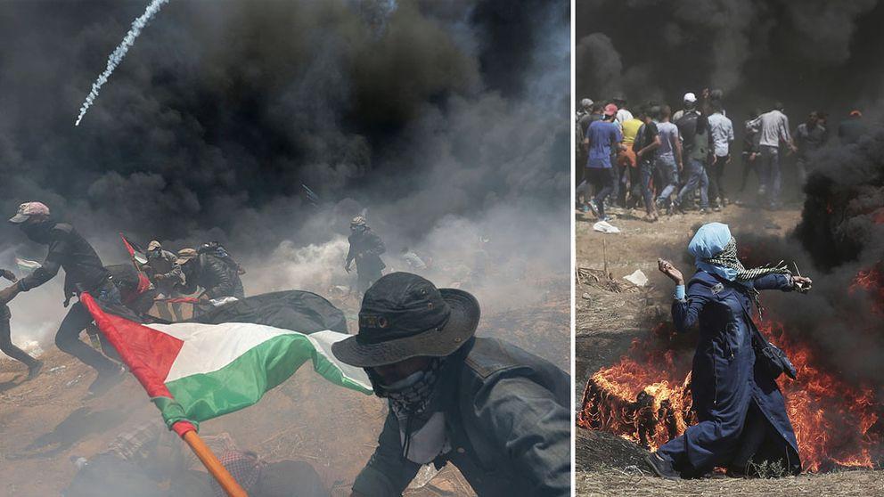 Folk som kastar sten och springer med palestinska flaggan i Gaza. Bildäck brinner, stora rökmoln. På marken ligger personer och försöker skydda sig.