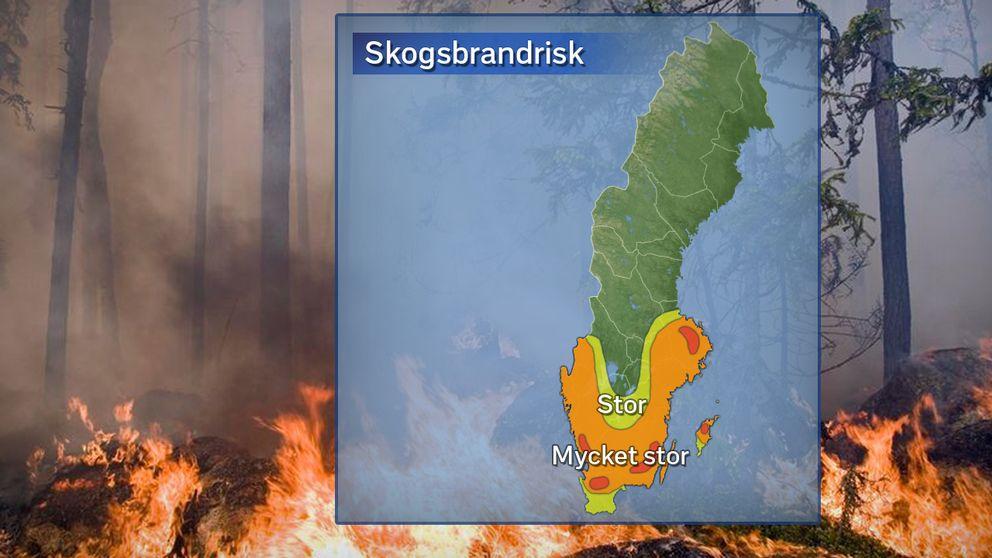 Stor risk för skogsbrand i hela Stockholms län.
