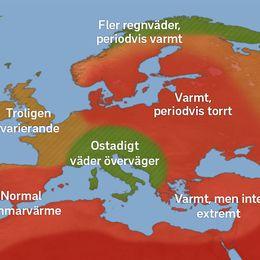 Kartan visar de mest troliga och dominerande dragen för sommaren 2018. Det är en kombination av den tänkta fördelningen av luftmassor samt var torrare och blötare väder väntas överväga. Läs gärna hela artikeln för bästa förståelse av resonemanget.