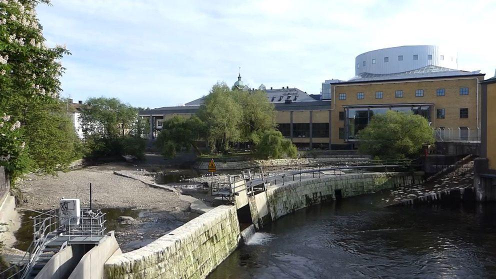 hästskodammen torrlagd Louis De Geer Norrköping