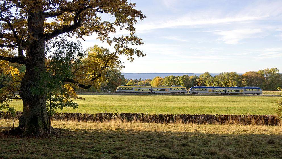Ett tåg som åker mellan Lidköping och Mariestad.
