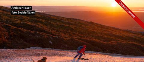 Mårdsundsrännan i Bydalsfjällen igår morse precis vid soluppgången runt kl 03.35. Det är en årlig tradition mot 23 maj att några samlas och går upp på fjället den natten för att fika, umgås och njuta av den ljusa natten samt soluppgången. Sedan blir det åkning ned på snön som ligger kvar på skidor eller annat. Nytt för i år att nu hade löven på fjällbjörkarna hade slagit ut! Det har inte hänt sedan 2001 enligt en person som har varit med alla gånger sed