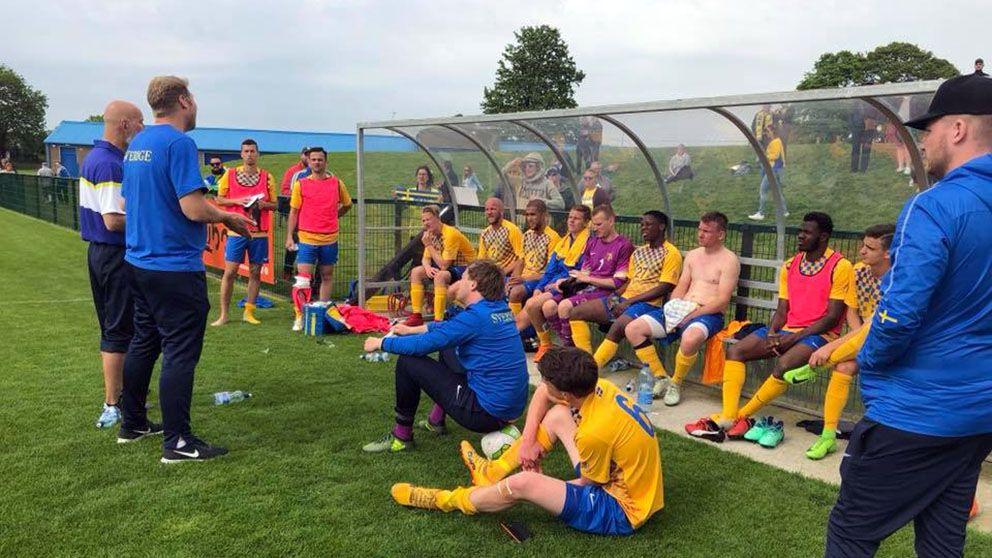 Sveriges fotbollslandslag förlorade mot Irland med 0-3 i EM-kvalet.