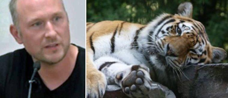 Tiger tvaa vann 75 miljoner