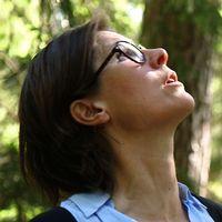 Naturskyddsföreningens ordförande Johanna Sandahl tittar på trädkronorna i skogen.