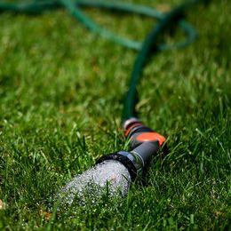 En vattenslang ligger i gräset.