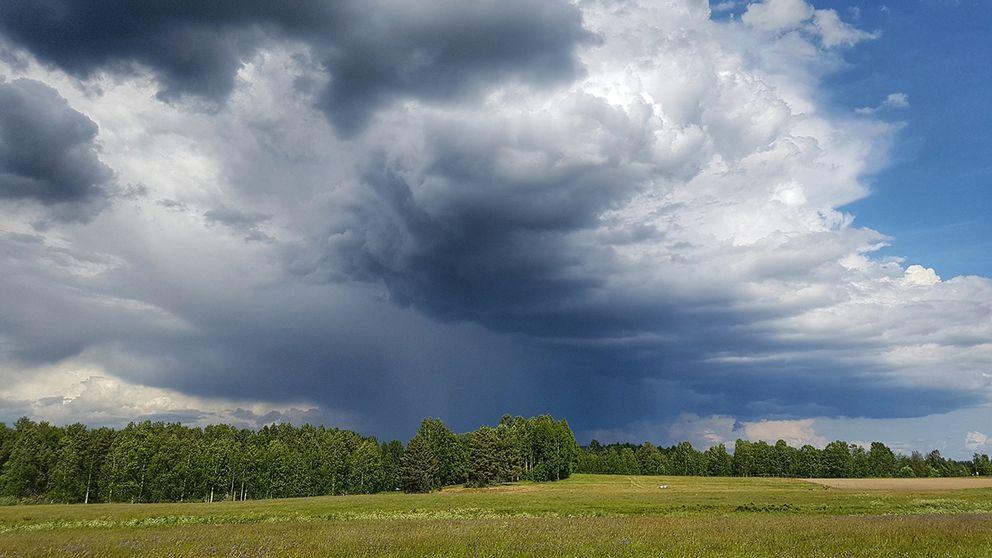 Nu har det dragit in blixtar och dunder och en rejäl regnskur över Venjan i Dalarna, så nu hoppas jag på mycket regn!