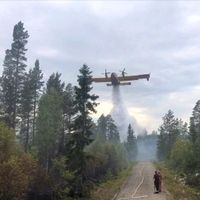 brandflyg vattenbombar skog vid grusväg, små figurer på vägen ser på.