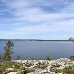 Umeå, 17 juni.