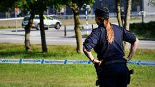 Förra året slutade drygt 460 för att ta ett annat jobb, år 2012 var den siffran 179. (Polisen på bilden har ingen koppling till nyhetstexten)