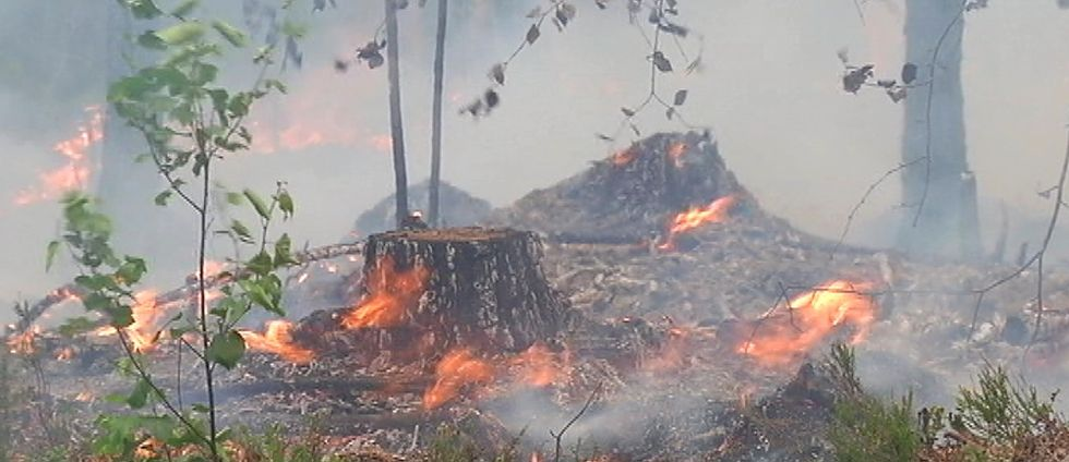 Eldningsförbudet i Västernorrland gäller tills vidare.