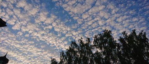Sunne, Värmland, 24 juni