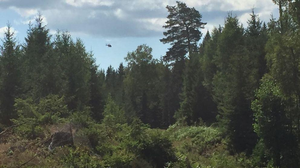 En helikopter söker i området över skogen