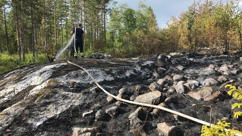 brandmsn sprutar vatten på öppen stenig yta i skogen