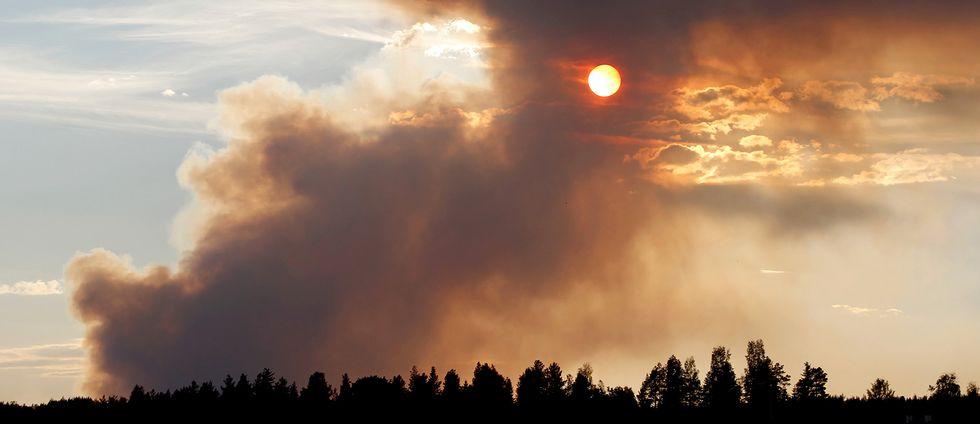 Kraftig rök över en skog utanför Ljusdal