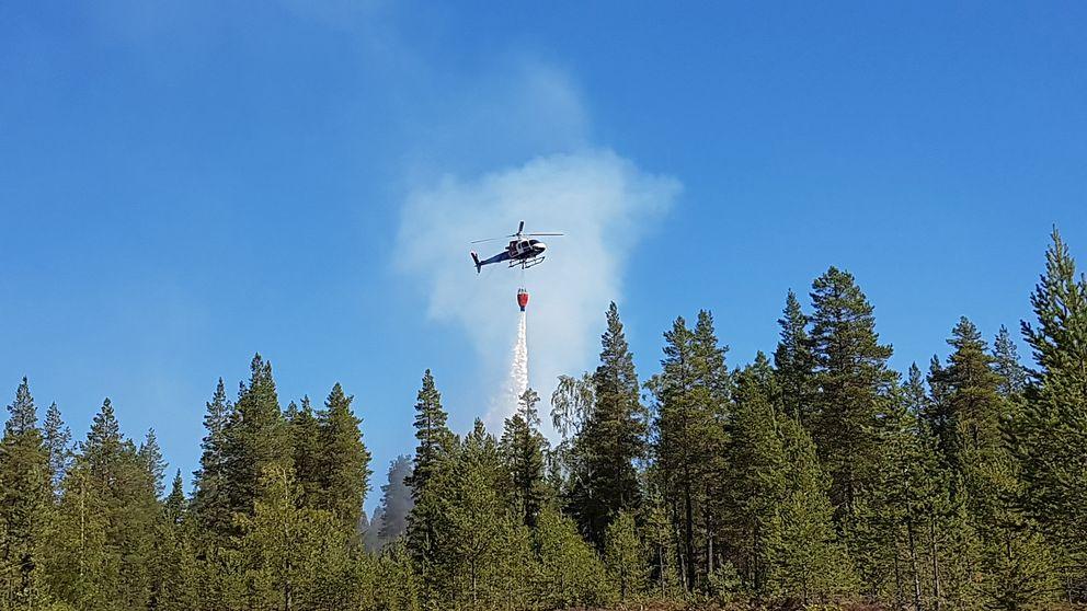 helikopter som vattenbombar skog