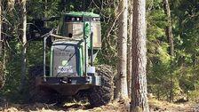 Skogsmaskiner står stilla på grund av brandrisken