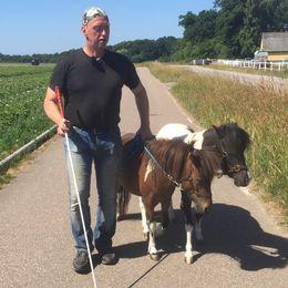 Jan Johannesson och hans ledarhästar.