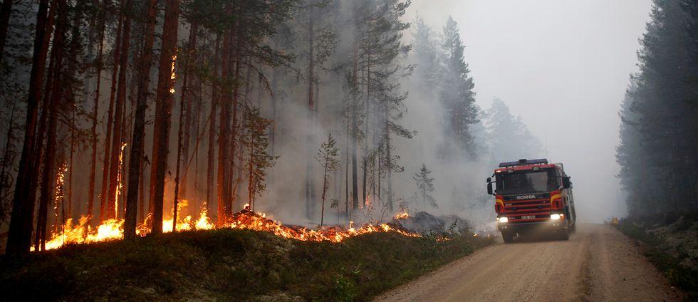 Skogsbranden vid Kårböle strax utanför Ljusdal.