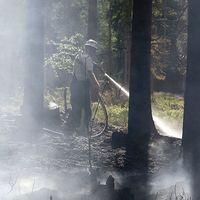 närbild man som intervjuas i skogen, samt bild på brandman med slang, rykande mark
