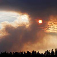 Branden i Ljusdal växer dramatiskt – har fyrdubblats
