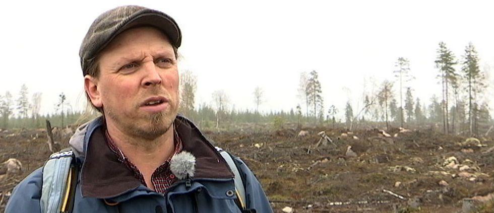 Mitt under pågående reservatsbildning avverkade mljöcertifierade Mellanskog ett område i det planerade Kallkärrskogens naturreservat i norra Värmland. Ett annat miljöcertifierat bolag ville också avverka i samma reservatsområde. Nu får skogsbranschen skarp kritik för att inte leva upp till kraven i sina miljöcertifieringar.