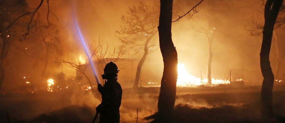 50 döda i grekiska skogsbränder