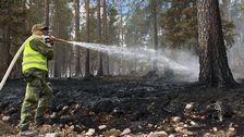 Det senaste om bränderna i Sverige