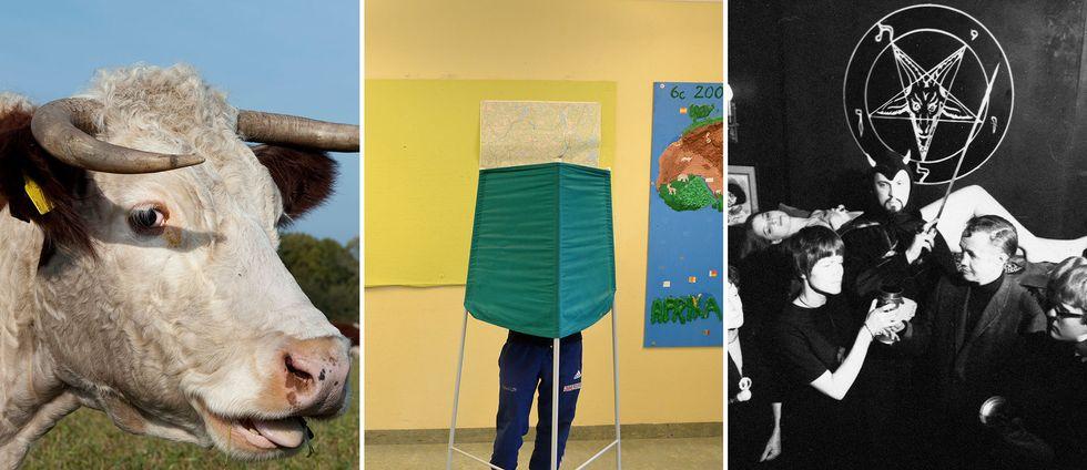 Kossor, stenar och satan. Här är några av Sveriges udda partier som ställer upp i riksdagsvalet 2018.