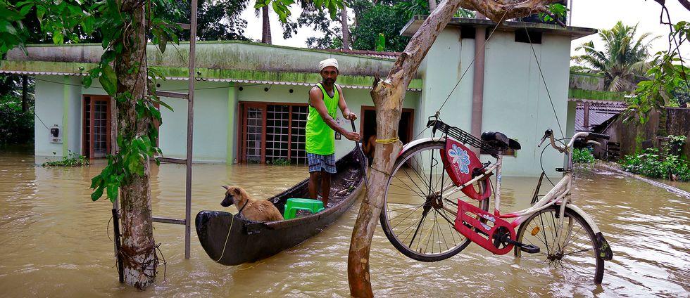 En man ror en båt i höjd med takhuset på grund av översvämningarna i Kerala, Indien.