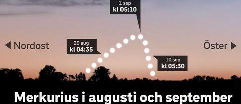 Från nu till en bit i september kan du se Merkurius.