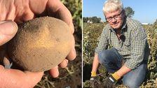 Odlaren Dan Pettersson och en av hans Belana-potatisar som fått sprickor i skalet.