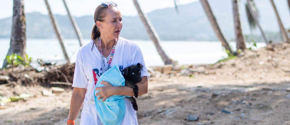 Nicole DiPaolo har grundat en hjälporganisation för övergivna hundar i Puerto Rico.