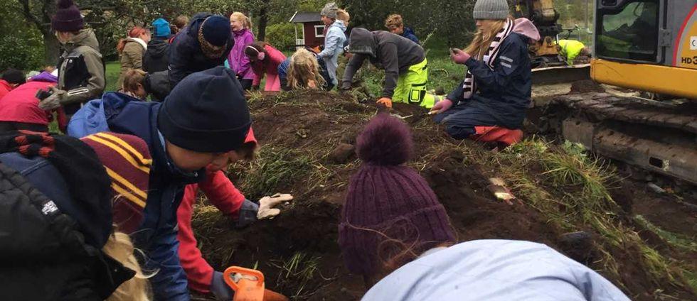 Elever från Östansjö skola är med och söker bland gravarna vid Viby väster om Hallsberg.