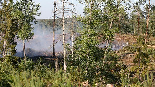 Brand vid kalhygge norr om Åryd – 30 brandmän på plats