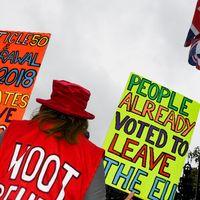 Brexit-supportrar samlades under måndagen utanför parlamentet.