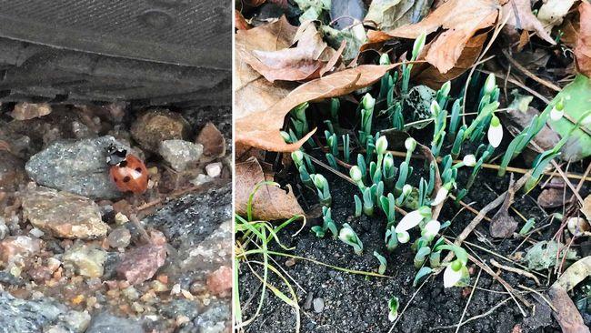 Här nalkas våren runt om i Blekinge