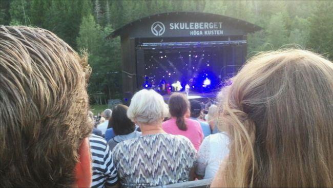 Naturscen Skuleberget blev Årets konsertplats 2019