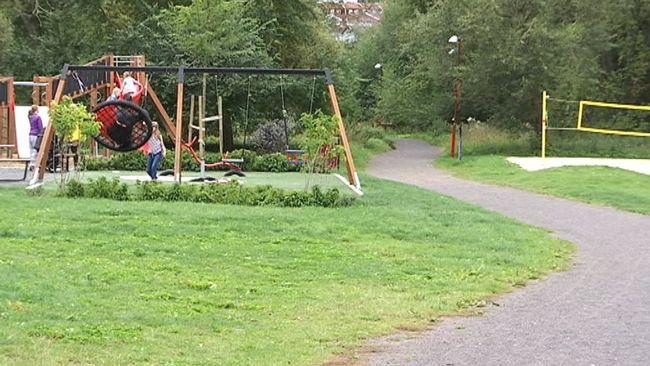 Bly och kvicksilver i marken i Smedbyparken
