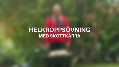 Träna med Sofia Åhmans cirkelträningspass i trädgården.