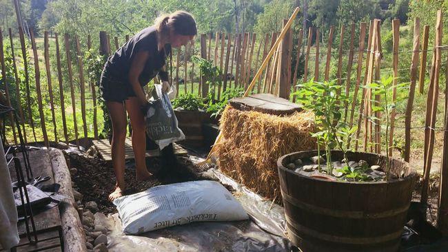 Elin Unnes gör en hemlig trädgård med gifta växter på torpet.