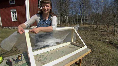 trädgård, ung kvinna spänner duk över träställning