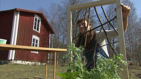 trädgård och trähus, ung kvinna håller träram med pinnar på.