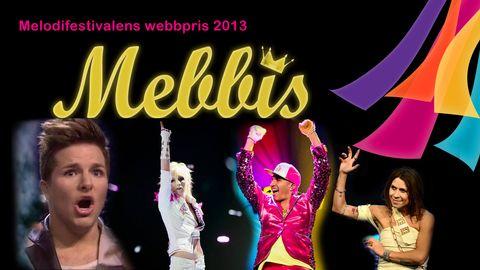 Mebbis 2013